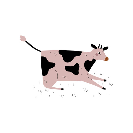 Spotted Cow Lying on Meadow, Dairy Cattle Animal Husbandry Breeding Vector Illustration on White Background.