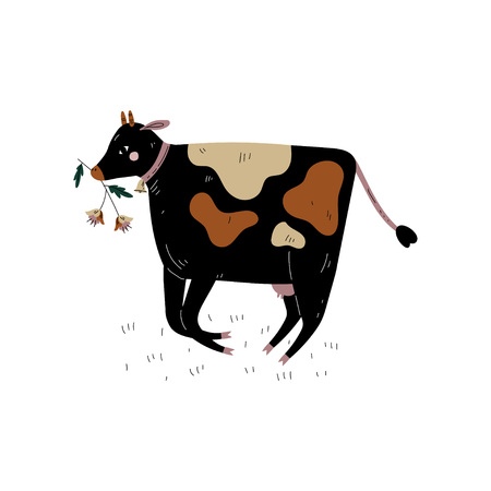 Black Spotted Cow Chewing Grass, Dairy Cattle Animal Husbandry Breeding Vector Illustration on White Background. Standard-Bild - 124143481