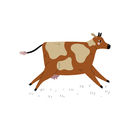 Brown Spotted Cow Running, Dairy Cattle Animal Husbandry Breeding Vector Illustration on White Background. Иллюстрация
