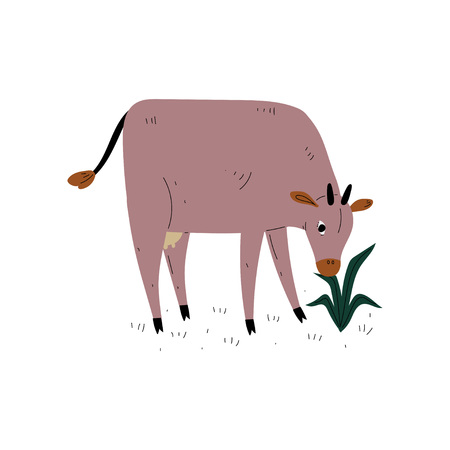 Brown Cow Grazing on Meadow, Dairy Cattle Animal Husbandry Breeding Vector Illustration on White Background. Illustration