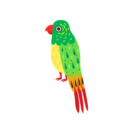 Tropical Parrot Bird with Colored Feathers, Wings and Tail Vector Illustration on White Background.