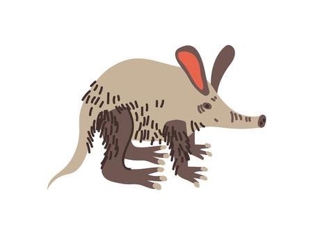 Aardvark Wild Exotic African Animal Vector Illustration on White Background.