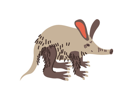 Aardvark Wild Exotic African Animal Vector Illustration on White Background.