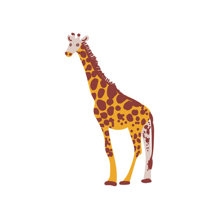 Giraffe Wild Exotic African Animal Vector Illustration on White Background. Illustration