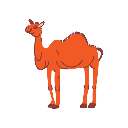 Camel Wild Exotic African Animal Vector Illustration