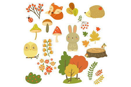 Autumn forest elements set, forest animals, leaves, flowers, berries and mushrooms cartoon vector Illustrations isolated on a white background. Standard-Bild - 124011590
