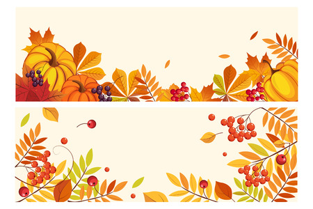Thanksgiving background with space for text, horizontal banners with orange pumpkins, leaves of maple and rowan vector Illustration, web design Illustration