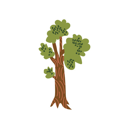 Green Tree, Urban Architecture Design Element Cartoon Vector Illustration on White Background. Illustration