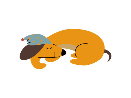 Purebred Brown Dachshund Dog Wearing Cap Sleeping, Funny Playful Pet Animal Cartoon Character Vector Illustration 写真素材 - 120290540