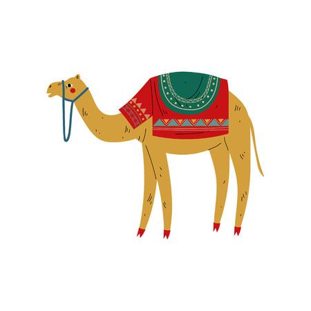 Cammello con sella sul retro, animale del deserto, simbolo della cultura egiziana tradizionale illustrazione vettoriale su sfondo bianco.