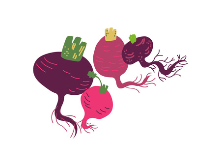 Different Beetroot Varieties Fresh Vegetable, Organic Nutritious Vegetarian Food for Healthy Diet Vector Illustration on White Background.