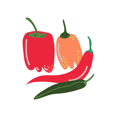 Different Pepper Varieties Fresh Vegetable, Hot and Sweet Bulgarian Bell Peppers, Organic Nutritious Vegetarian Food for Healthy Diet Vector Illustration on White Background. Illustration
