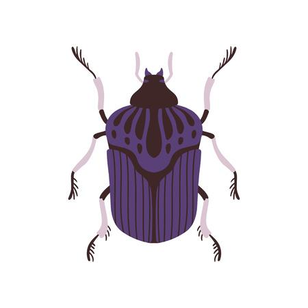 Ilustración de Vector plano de vista superior de insecto azul y negro