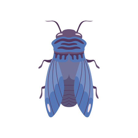 Blue Fly Insect Top View Flat Vector Illustration Çizim