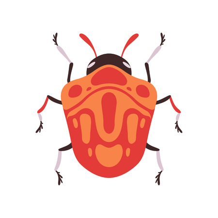 Orange Bug Insect Top View Flat Vector Illustration
