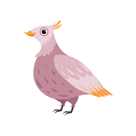 Beautiful pink bird vector Illustration isolated on a white background. Иллюстрация