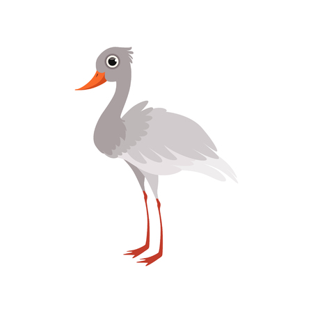 Beautiful white stork bird vector Illustration isolated on a white background.
