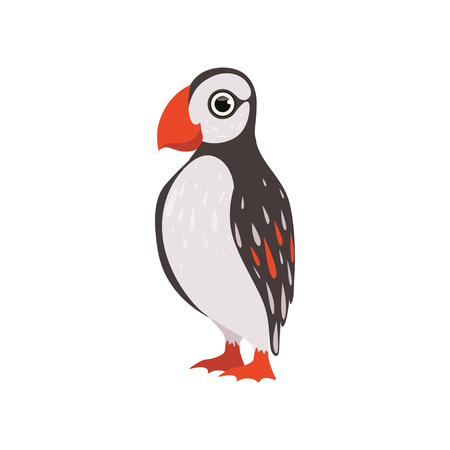 Colorful beautiful puffin bird vector Illustration isolated on a white background. Фото со стока - 123534393