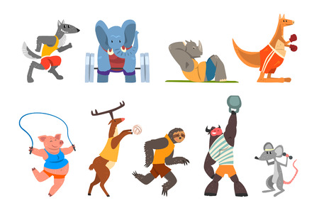 Animals doing exercise, kangaroo, hippo, wolf, elephant, pig, bull, sloth and deer in the gym, fitness and healthy lifestyle vector Illustrations isolated on a white background. Illustration