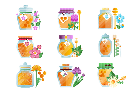 Glass jars of herbal honey set, natural golden organic honey and wild flowers vector Illustrations isolated on a white background.