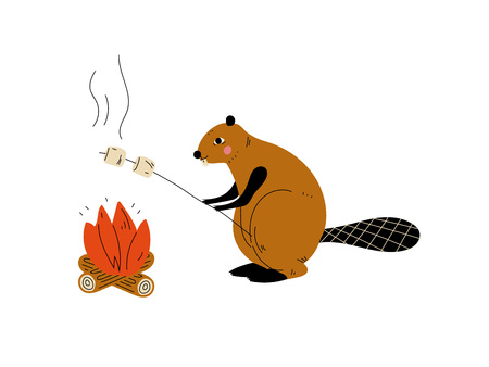 Beaver Roasting Marshmallows on Bonfire, Animal Character Having Hiking Adventure Travel or Camping Trip Vector Illustration on White Background. Çizim