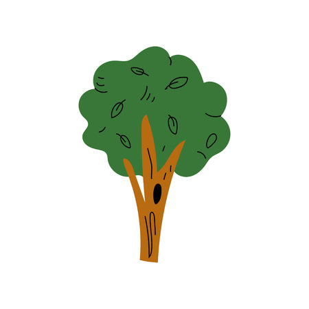 Green Tree, Summer Landscape Design Element Vector Illustration on White Background. Ilustração