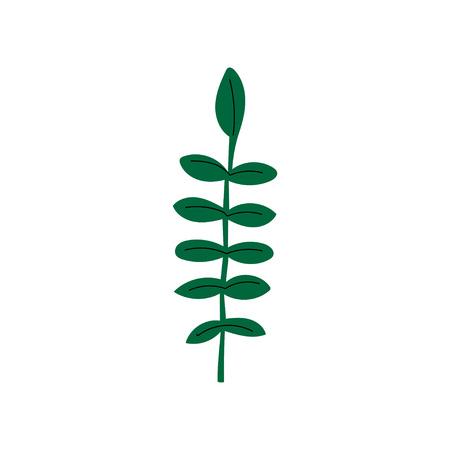 Wild Herb Summer Landscape Design Element Vector Illustration on White Background.