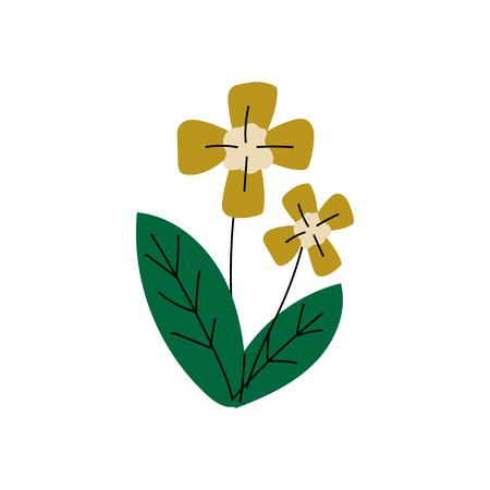 Wild Forest or Garden Flower, Summer Landscape Design Element Vector Illustration on White Background.
