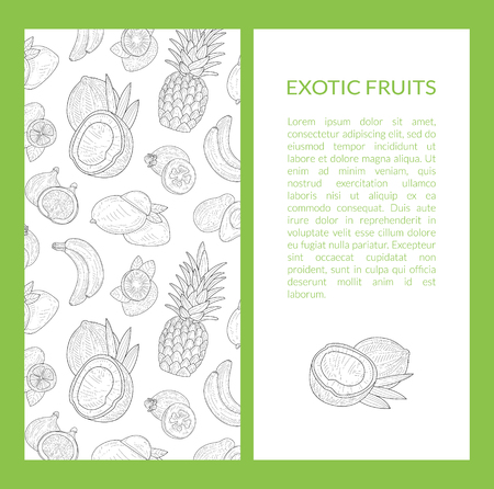 Exotic Fruits Banner Template with Place for Text, Tropical Plants Hand Drawn Vector Illustration Reklamní fotografie - 121316535