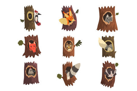 Cute animals and birds sitting in hollow of tree set, hollowed out old tree and fox, owl, wolf, raccoon, woodpecker and squirrel inside cartoon vector Illustrations isolated on a white background. Stock Illustratie