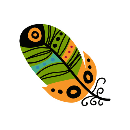 Bright Bird Feather Painted in Colorful Patterns, Decoration Element Vector Illustration on White Background.