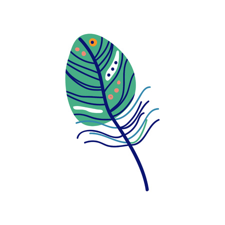 Beautiful Colored Bird Feather Decoration Element Vector Illustration on White Background.