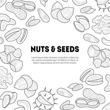 Natural Nuts and Seeds Banner Template with Place for Your Text, Tasty and Healthy Organic Food Hand Drawn Vector Illustration