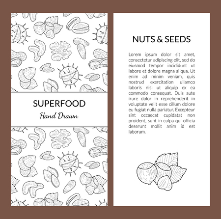 Superfood Card Template with Place for Your Text, Nuts and Seeds, Tasty and Healthy Organic Food Hand Drawn Vector Illustration