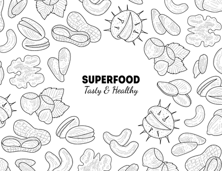 Superfood Banner Template, Nuts and Seeds, Tasty and Healthy Organic Food Hand Drawn Vector Illustration