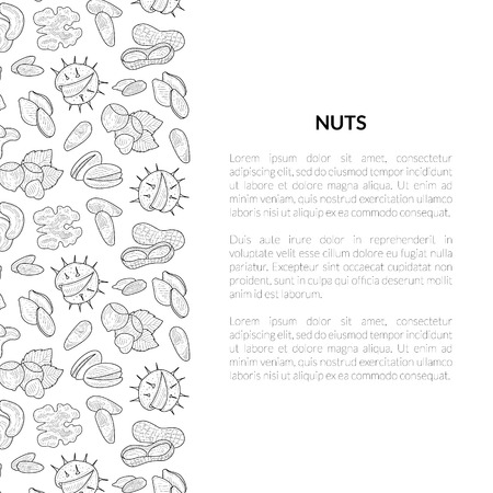 Nuts Banner Template with Place for Your Text, Tasty and Healthy Organic Food, Nuts and Seeds Hand Drawn Vector Illustration Stock Illustratie