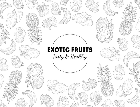 Exotic Fruits, Tasty and Healthy Banner Template with Hand Drawn Seamless Pattern Monochrome Vector Illustration Banque d'images - 121798445