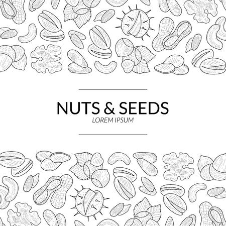 Nüsse und Samen-Banner-Vorlage, natürliche leckere und gesunde Bio-Lebensmittel-Hand-Vektor-Illustration Vektorgrafik