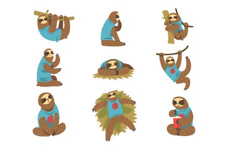 Funny sloths set, lazy exotic rainforest animal character in different postures vector Illustrations isolated on a white background. Illustration