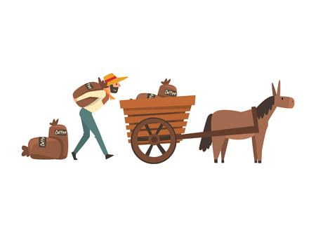 Agriculteur en chapeau de paille chargement des sacs de café dans une charrette à âne, illustration vectorielle de l'étape de la production de l'industrie du café sur fond blanc.