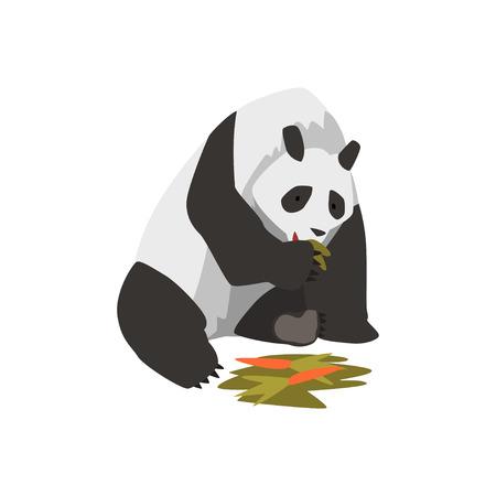 Cute Panda Bear Animal Eating Carrot Vector Illustration on White Background. Illustration