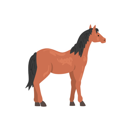 Brown Thoroughbred Horse Animal, Side View Vector Illustration