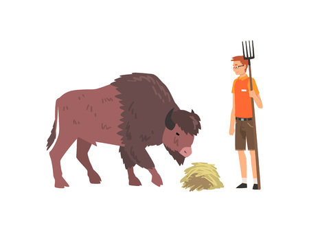 Zoo Worker Feeding Buffalo, Professional Zookeeper Character Caring of Animal Vector Illustration