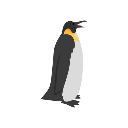 Cute Penguin Arctic Bird, Side View Vector Illustration Çizim