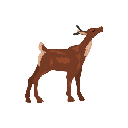 Cute Baby Deer Animal, Side View Vector Illustration