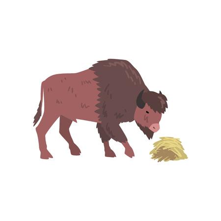 Buffalo Eating Hay, Bison Animal, Side View Vector Illustration