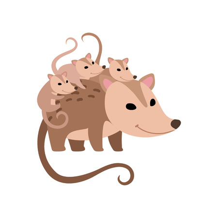 Mother Opossum with Its Babies, Family of Opossums Vector Illustration on White Background.