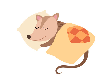 Cute Opossum Sleeping in Bed, Adorable Wild Animal Cartoon Character Vector Illustration on White Background.
