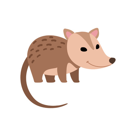 Cute Opossum Wild Animal Side View Vector Illustration