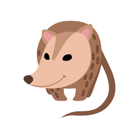Cute Opossum, Adorable Wild Animal Front View Vector Illustration on White Background.